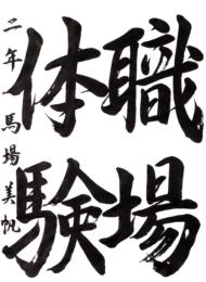 仙台市立台原中学校 2年 馬場 美帆